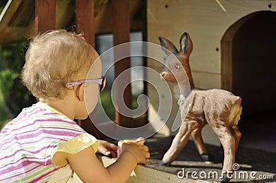 Baby and roe deer