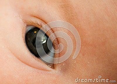 Baby s Eye