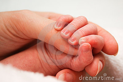 Baby s hand gripping thumb