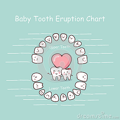 Free Baby Tooth Chart Record Stock Photos - 65182513