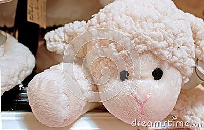 Baby's Toy Stuffed Lamb