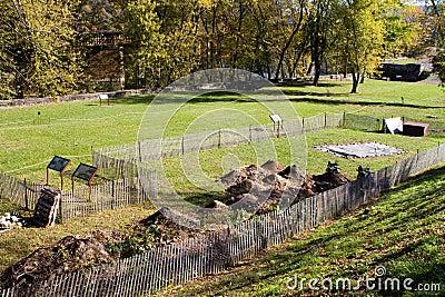 Bac de harpistes de site de fouille d archéologie
