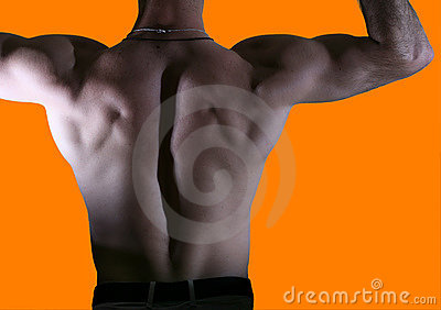 Back of a male body