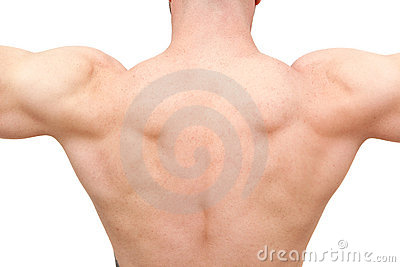 Back of muscular body builder man