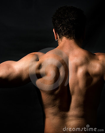 Back of muscular male bodybuilder