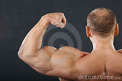 Back, neck and hand muscles of bodybuilder