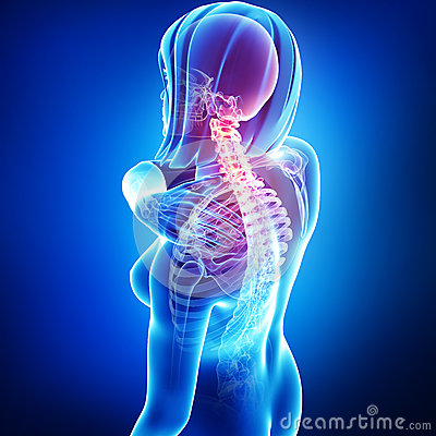 back pain in female body