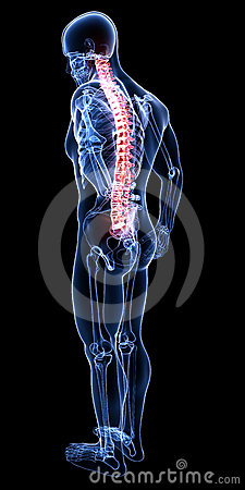 Back pain with full body