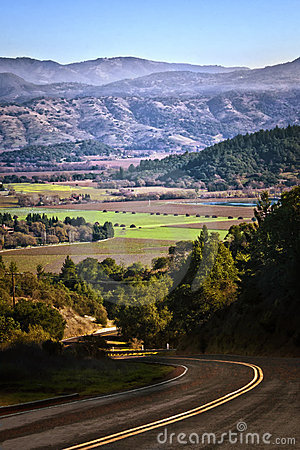 Free Back Road Into Napa Valley, California Stock Photos - 22634543