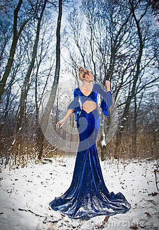 Free Back Side View Of Lady In Long Blue Dress Posing In Winter Scenery, Royal Look. Fashionable Blonde Woman With Forest In Background Stock Image - 48715131