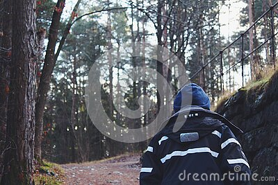 Back View Of Man In Forest Free Public Domain Cc0 Image