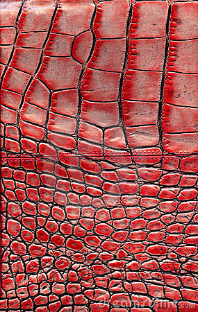 background alligator skin