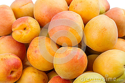 Background of the apricots