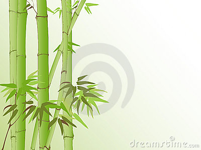 Background with bamboo pattern