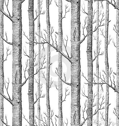 background from birch trees without leaves stock illustration image 5408735