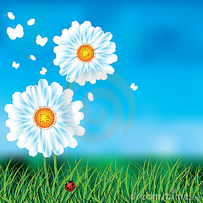 Background with blue skies and daisies.