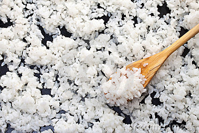 Background of boiled rice