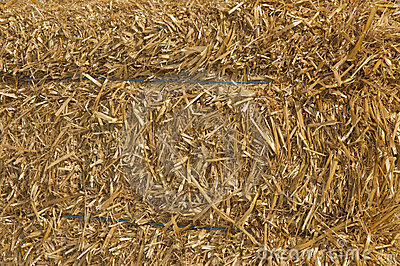 Background. Bulk of straw.