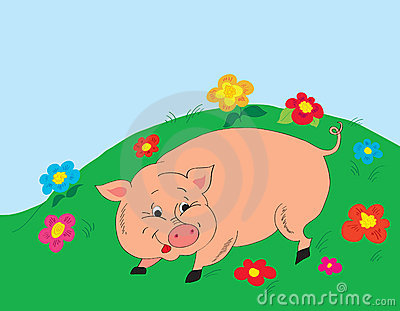 Background. A cheerful pig on a glade with colors