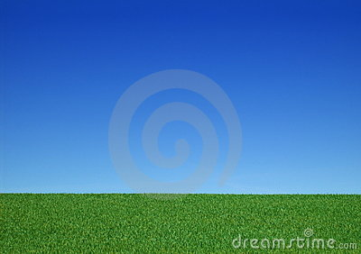 Background - Clear - Meadow with Blue Sky