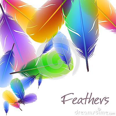 Background with colorful feathers