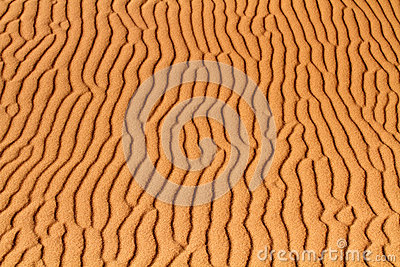 Background  of desert sand with ripples