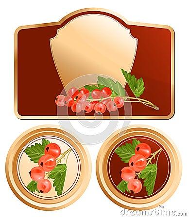 Background for design of packing. Jam jar
