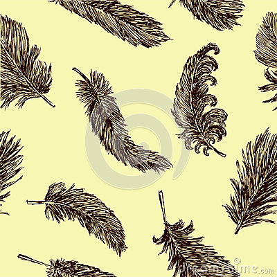 Background with a feathers