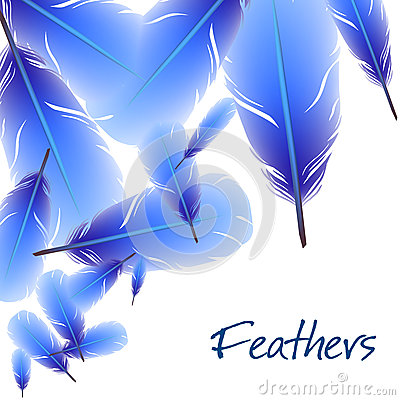 Background with feathers