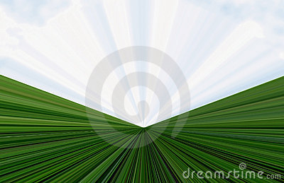 Background of grass and sky