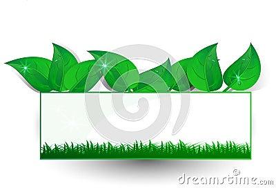 Background green banner petal