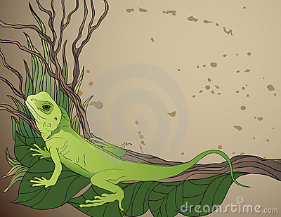 Background with green lizard