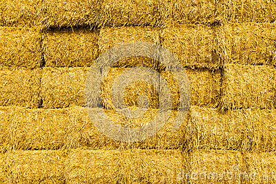 Background of hay