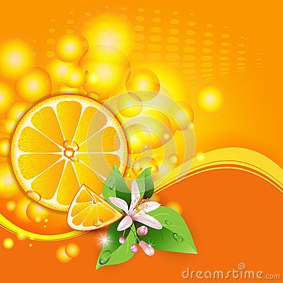 Background with juicy slices of orange fruit