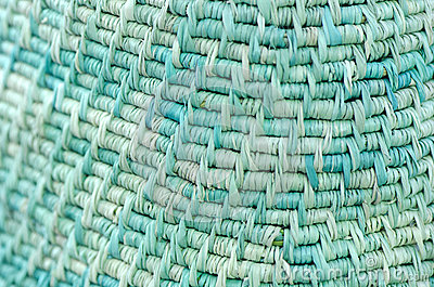 Background made from Vetiver Grass  (Vetiveria zi