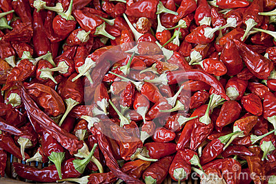 Background with many chilli peppers