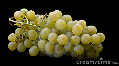 background of natural grape green