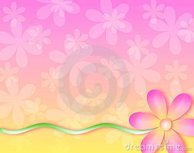 Background - no wall flower
