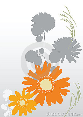 Background orange flowers