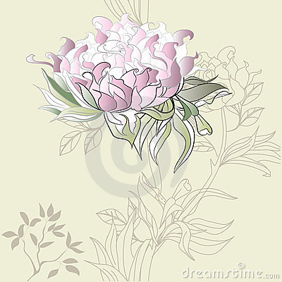 Background with Paeonia flowers