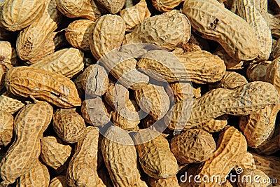 Background peanut