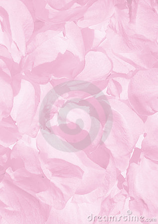 Background of petals