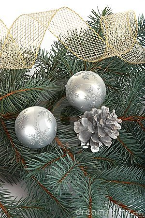 Background with pine branch and silver b