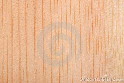 Background from raw even smooth wood