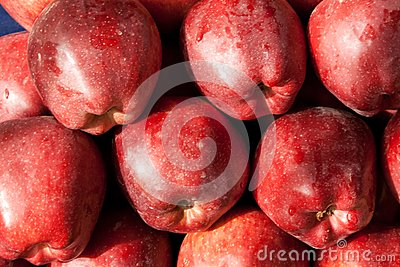 Background of red ripe apples