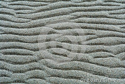 Background - Rippled Sand