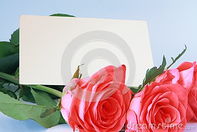 Background With Roses Royalty Free Stock Images - Image: 15111739