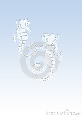 Background sea horses