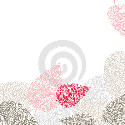 Background with skeletons of leaves