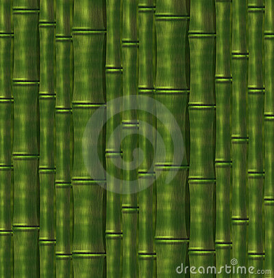 Background from  stalks of a bamboo
